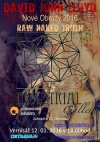 DAVID JOHN LLOYD: Raw naked truth